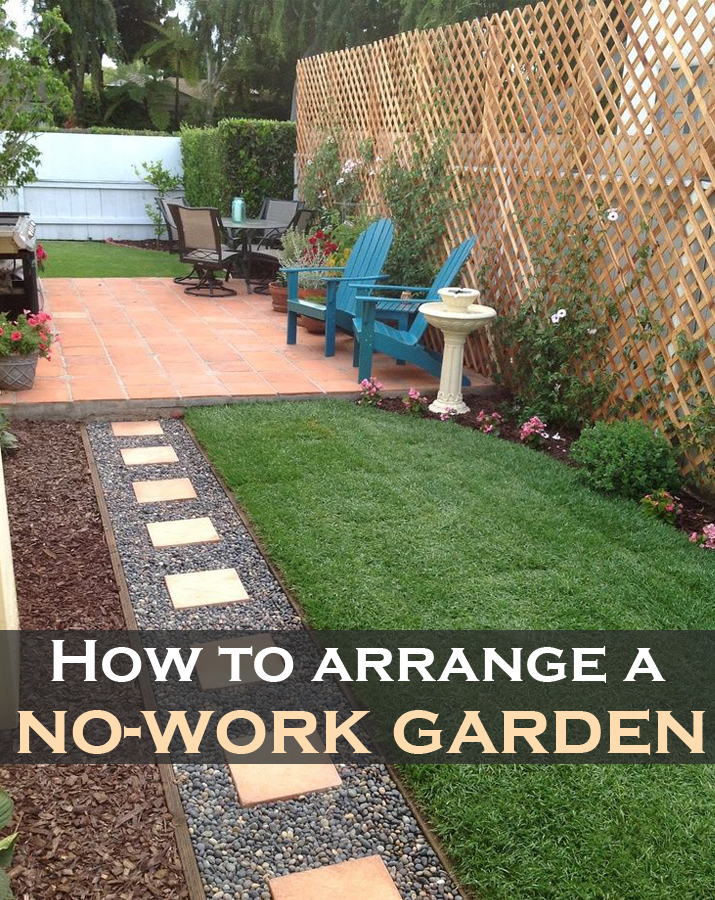 How-to-arrange-a-no-work-garden.jpg