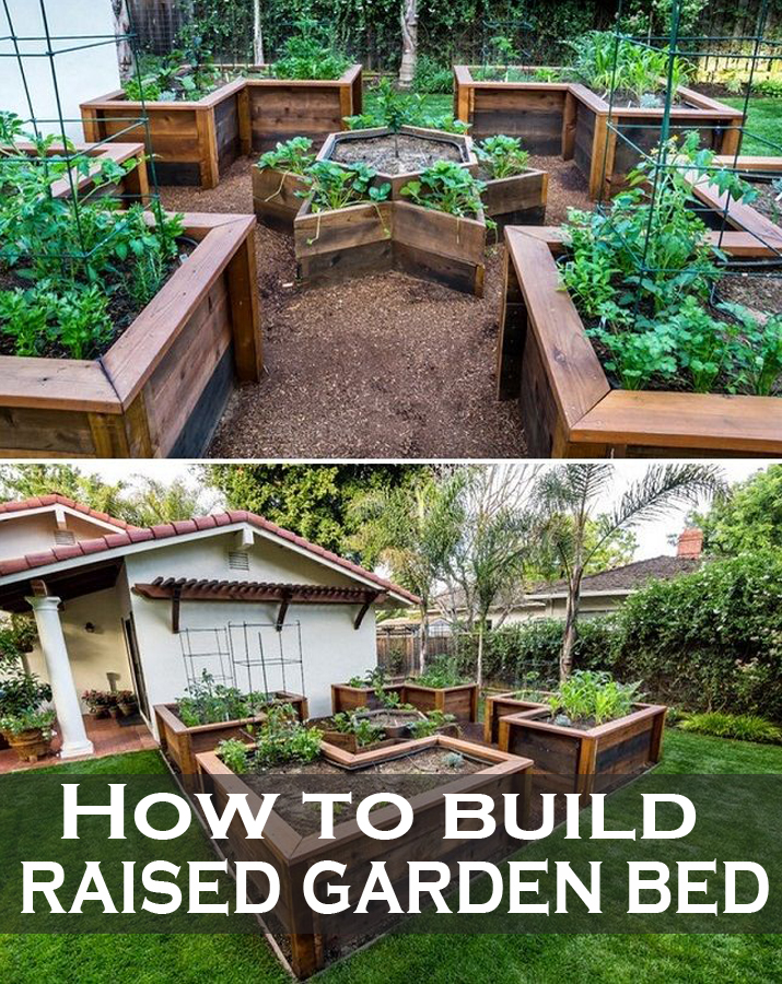How to build raised garden bed green leaf tips for How to make a raised garden
